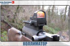 Нужен ли коллиматор на охоте?