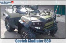 Cectec Gladiator 550 – современный герой-квадроцикл!