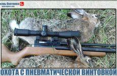 Охота с пневматической винтовкой!