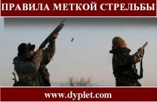 Правила меткой стрельбы