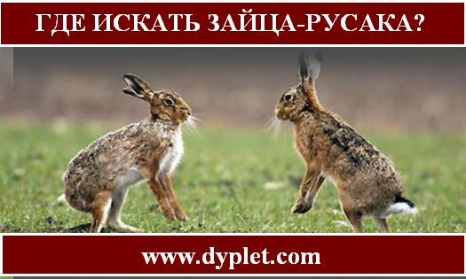 Владислав зайцев футболист фото ротрок экране