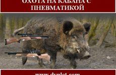 Охота на кабана с пневматикой