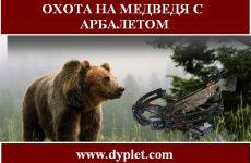 Охота на медведя с арбалетом