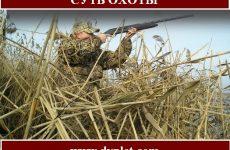 Суть охоты.Размышления и доводы