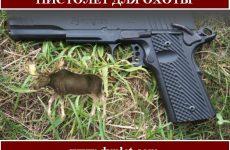 Пистолет для охоты. Модели и характеристики