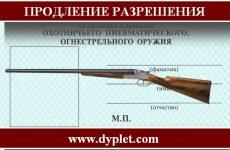 Продление разрешения на охотничье оружие. Все тонкости процедуры