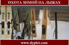 Охота зимой на лыжах. Какие лыжи выбрать для охоты?